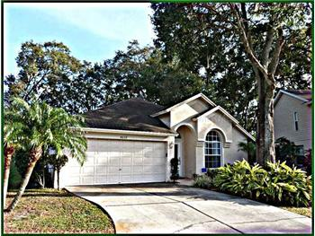 4639 Hidden Shadow Dr, Tampa, FL