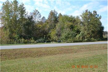 Lot 44 Sunnyview CT, Iron Station, NC