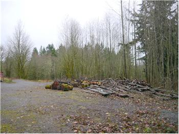 29001 Lot 3 NE 189th St, Duvall, WA