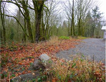 29000 Lot 4 NE 189th St, Duvall, WA