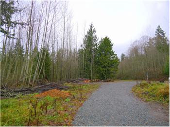 29301 Lot 3&4 NE 189th St,, Duvall, WA
