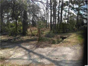 Lot 5 N Farr Avenue, Andrews, SC