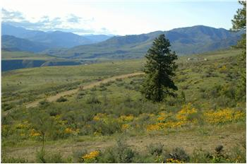 Lot 23 Scenic View Drive, Methow, WA