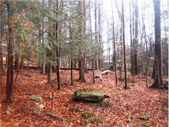 Lot 1041 Hibernation Rd Indian Rocks, Lake Ariel, PA