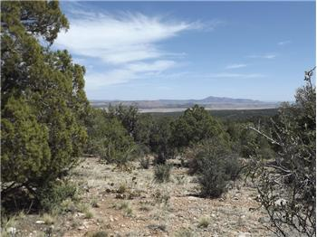 Lot 487  Sierra Verde Ranch, Seligman, AZ
