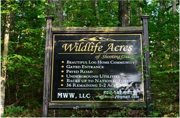 40.62 Acres Wildlife Acres, Hayesville, NC