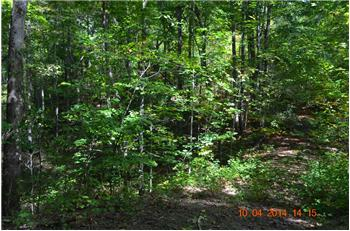 Lot 9  Bristol Ridge, Hayesville, NC