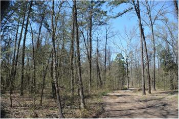 Tract 7 Timber Creek Trails, Hochatown, OK