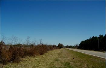 40 Acres in Redland, Idabel, OK