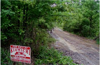Mt. Herman Lots For Sale (3-Total), Hochatown, OK