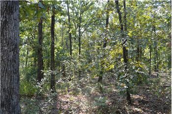 Approx 24 acres with Hwy 3 Frontage, Wright City, OK