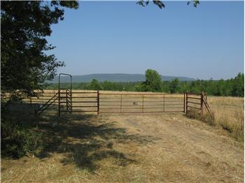 42 Acres Mixed Woodland & Pasture near Smithville, Smithville, OK